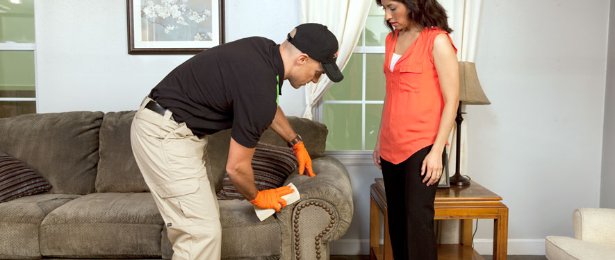 Bronx, NY carpet upholstery cleaning
